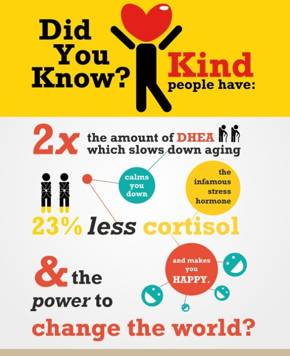 Did you know that kind people have 2x the amount of DHEA, which slows the aging proccess, calms you down, and makes you happy.  Did you know that kind people have 23% less cortisol,  the infamous stress hormone.  And did you know that kind people have the power to change the world!  Kindness Poster