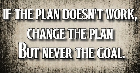 If the plan doesn't work, change the plan but never the goal.  ~  #quote #plan #success #taolife