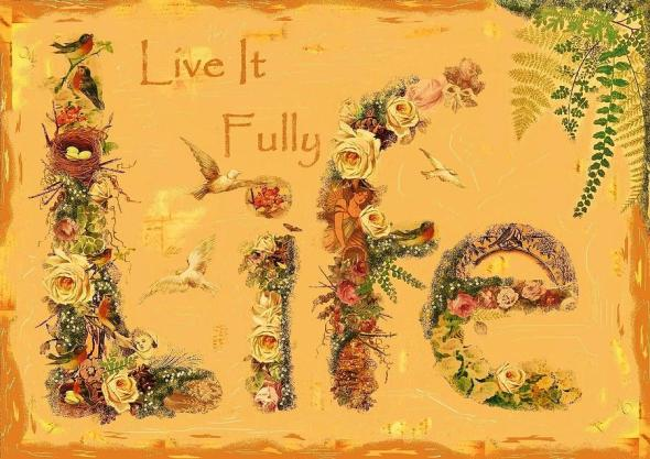 Life's short - Live life fully   #life #quotes #taolife #posters