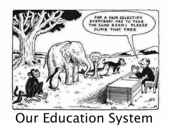 Our Education System - Touché! - Cartoon Poster