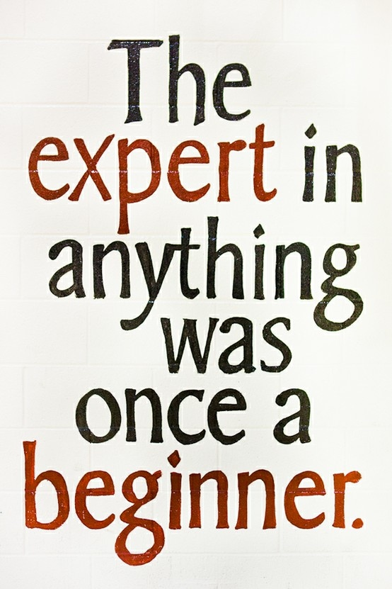 The expert in anything was once a beginner.  #poster #experience #taolife