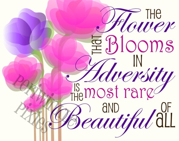 The flower that blooms in adversity is the most rare and beautiful of all.  ~  #taolife   #strength  #quotes
