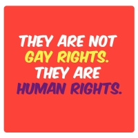 They are not gay rights, they are human rights.